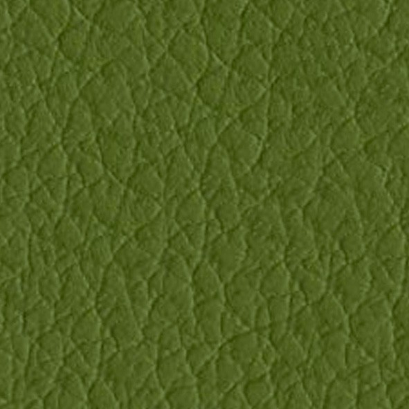 18 Olive Eco-leather