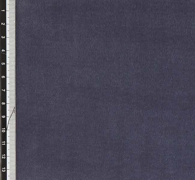 Pigeon_105-2310