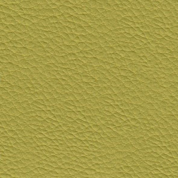 Eco-leather Cedro 29
